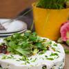 Rezept: Herzhafter Käsekuchen mit Pumpernickel-Boden, Salat und Frischkäse mit karamellisierten Zwiebeln von miree