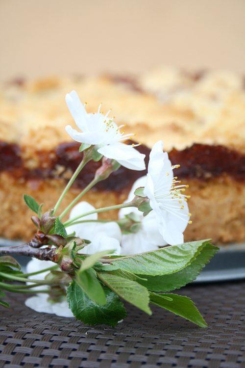 Kirsch-Streusel-Kuchen 3-l