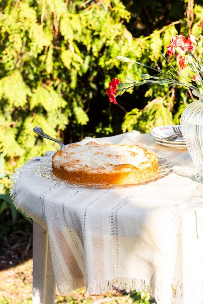 Kokos-Kuchen-saftig