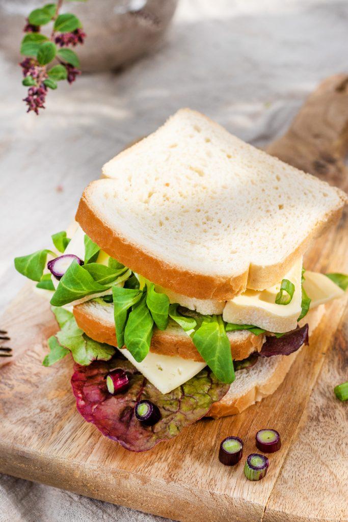 Dreierlei-Käse-Sandwich