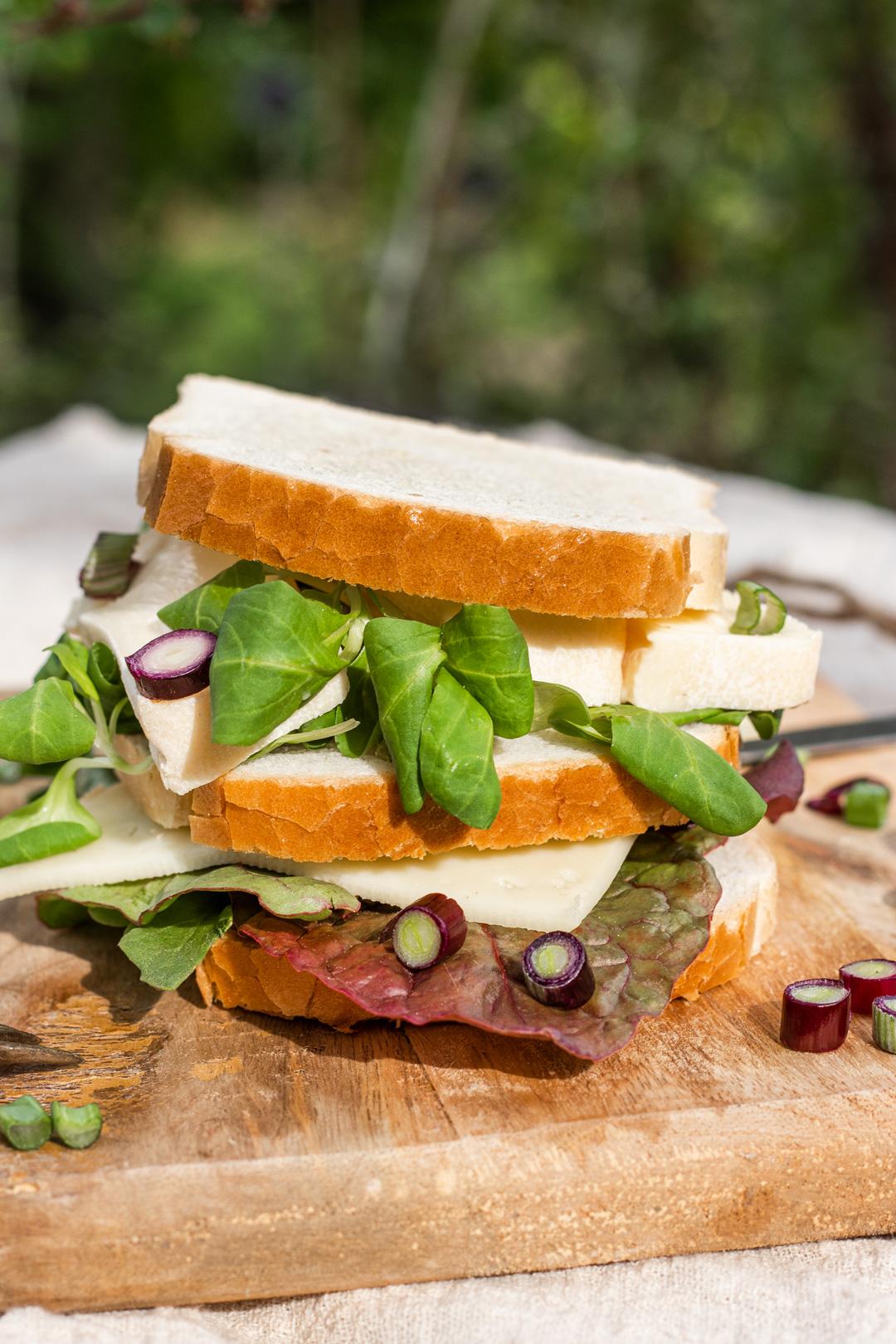 Sandwiches-Rezepte